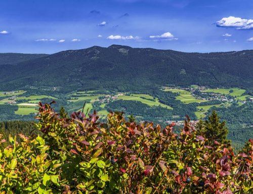 03.08.2021 – 07.08.2021 Bayrischer Wald